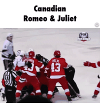 Red Wings, Wings, and Canadian: Canadian  Romeo & Juliet  Fox  FOX  RED WINGS  HELM  JV 13  7