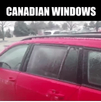 Dank, Canada, and Canadian: CANADIAN WINDOWS Meanwhile, in Canada...
