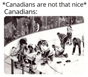 Imagine having two Canadian hockey teams looking for a contact lens in a match: *Canadians are not that nice*  Canadians: Imagine having two Canadian hockey teams looking for a contact lens in a match