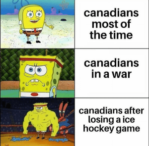 Hockey, Game, and Time: canadians  most of  the time  canadians  in a war  canadians after  losing a ice  hockey game Id say thats pretty accurate, Eh