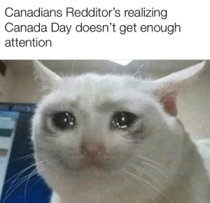 Canada eh? 🇨🇦: Canadians Redditor's realizing  Canada Day doesn't get enough  attention Canada eh? 🇨🇦