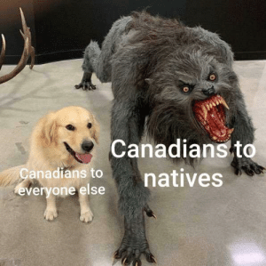 Its true tho: Canadians to  natives  anadians to  everyone else Its true tho