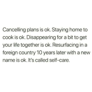 Dank, Life, and Memes: Cancelling plans is ok. Staying home to  cook is ok. Disappearing for a bit to get  your life together is ok. Resurfacing in a  foreign country 10 years later with a new  name is ok. It's called self-care. Meirl by wrckr31 MORE MEMES