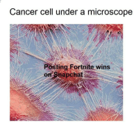 Cancer: Cancer cell under a microscope  Posting Fortnite wins  or Snapchat