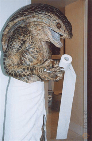 Candid photo of Hillary Clinton relaxing at a hotel between campaign stops 2016: Candid photo of Hillary Clinton relaxing at a hotel between campaign stops 2016
