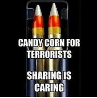 . ✅ Double tap the pic ✅ Tag your friends ✅ Check link in my bio for badass stuff - usarmy 2ndamendment soldier navyseals gun flag army operator troops tactical sniper armedforces k9 weapon patriot marine usmc veteran veterans usa america merica american coastguard airman usnavy militarylife military airforce libertyalliance: CANDY CORN FOR  TERRORISTS  SHARING IS  CARING . ✅ Double tap the pic ✅ Tag your friends ✅ Check link in my bio for badass stuff - usarmy 2ndamendment soldier navyseals gun flag army operator troops tactical sniper armedforces k9 weapon patriot marine usmc veteran veterans usa america merica american coastguard airman usnavy militarylife military airforce libertyalliance