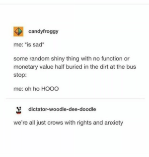 ": candyfroggy  me: ""is sad*  some random shiny thing with no function or  monetary value half buried in the dirt at the bus  stop:  me: oh ho HO00  dictator-woodle-dee-doodle  we're all just crows with rights and anxiety"