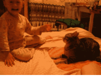 Animals, Bad, and Cats: candyrifle:  wildanduntamedthing:  dave-vriska:  enfeebler:  naathaaaly:  Reason why I hate cats. They're so scary.    #Reasons why I hate babies #they do this and everyone blames the pet  THE BABY SMACKED THE CAT WHY ARE YOU BLAMING THE ANIMAL  All the fucking time. People have their pets euthanized because they did something to their kid who fucking hit them or pulled on their tail or got in their face or something. Here's a better idea: WATCH YOUR FUCKING KID WHEN THEY'RE AROUND ANIMALS. Okay thanks.  ^^boldedBut this? Well, that's how kids learn, isn't it?they do bad shit, they get bad shit happening right back.I'll bet that little brat won't touch the cat again right? and OP is a fucking prick for trying to blame the cat for defending itself when the kid SMACKED THE CAT IN THE HEAD. That shit HURTS for a little cat. I'd lash back too. Asshole.