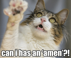 Omg, Tumblr, and Blog: canihasan amen?! omg-images:Preacher Cat