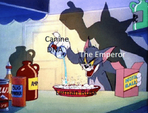 Space, Hilarious, and Wolves: Canine  DNA  The Emperor  AMIN  U BUG  POWDER  MOTE  BALE  Leman Russ  YE haha get it the space wolves are furries hilarious