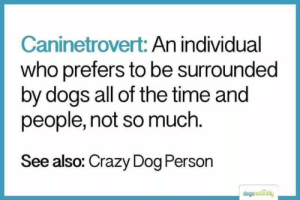 Crazy Dog: Caninetrovert: An individual  who prefers to be surrounded  by dogs all of the time and  people, not so much  See also: Crazy Dog Person  dogsnutrally