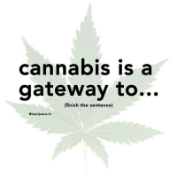 Weed, Gateway, and Marijuana: cannabis is a  gateway to...  (finish the sentence)  Omarijuana.tv Finish the sentence 😀 @marijuana.tv
