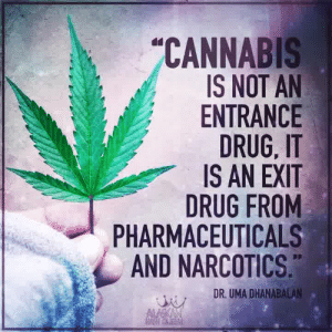 narcotics: CANNABIS  IS NOT AN  ENTRANCE  DRUG, IT  IS AN EXIT  DRUG FROM  PHARMACEUTICALS  AND NARCOTICS  DR. UMA DHANABALAN