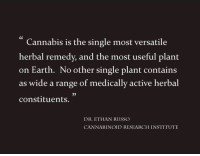 Memes, 🤖, and Container: Cannabis is the single most versatile  herbal remedy, and the most useful plant  on Earth. No other single plant contains  as wide a range of medically active herbal  constituents.  DR, ETHAN RUSSO  CANNABINOID RESEARCH INSTITUTE