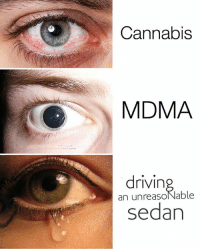 Who else: Cannabis  MDMA  drivin  an unreasolNable  sedan Who else