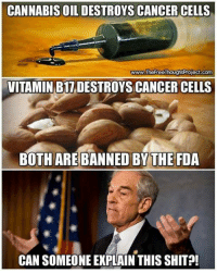 Can someone explain this nonsense?!: CANNABIS OIL DESTROYS CANCER CELLS  www.TheFreeThoughtProject.com  VITAMIN B17 DESTROYS CANCER CELLS  BOTH AREBANNED BY THE FDA  CAN SOMEONE EXPLAIN THIS SHIT Can someone explain this nonsense?!