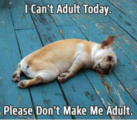 Cant Adult: Can't Adult Today  Please Don't Make Me Adult.