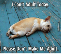 Just... don't. http://9gag.com/gag/aVW3Y6K?ref=fbp: Can't Adult Today  Please Don't Make Me Adult Just... don't. http://9gag.com/gag/aVW3Y6K?ref=fbp