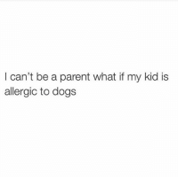 Dogs, Funny, and Parents: can't be a parent what if my kid is  allergic to dogs Kids gots ta go! (@newyorkcitylady)