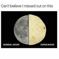 I'll have you know, that is my dinner: Can't believe I missed out on this  NORMAL MOON  SUPER MOON I'll have you know, that is my dinner