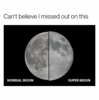 Funny, Moon, and Girl Memes: Can't believe I missed out on this  NORMAL MOON  SUPER MOON Smdh I screwed up