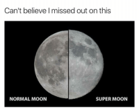 Moon, Dank Memes, and Super: Can't believe I missed out on this  NORMAL MOON  SUPER MOON 😫👌🏼