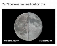 Memes, Moon, and 🤖: Can't believe I missed out on this  NORMAL MOON  SUPER MOON Oh man I can't believe i missed out on this!!