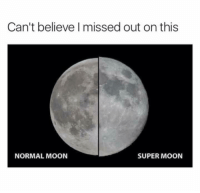 Memes, Moon, and 🤖: Can't believe I missed out on this  NORMAL MOON  SUPER MOON Blackula/Donnie