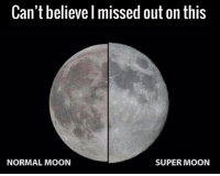 Dank, Moon, and 🤖: Can't believe I missed out on this  NORMAL MOON  SUPER MOON Gutted 🌚😪