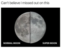 Memes, Moon, and 🤖: Can't believe I missed out on this  NORMAL MOON  SUPER MOON