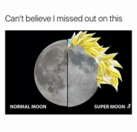 Dank, Moon, and 🤖: Can't believe I missed out on this  SUPER MOON 3  NORMAL MOON Very Anticlimactic