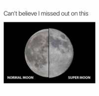 Super, Super Moon, and Normal: Can't believe missed out on this  NORMAL MOON  SUPER MOON