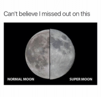 Dank, Moon, and 🤖: Can't believe missed out on this  NORMAL MOON  SUPER MOON Thanks Eva