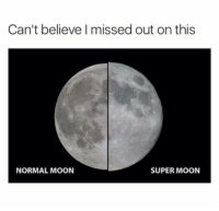 Funny, Moon, and Super: Can't believe missed out on this  NORMAL MOON  SUPER MOON