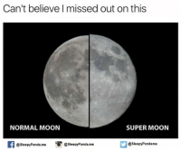 Memes, Panda, and Moon: Can't believe missed out on this  NORMAL MOON  SUPER MOON  @Sleepy Pandame  @Sleepy Panda.me  O @sleepy Panda.me