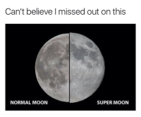 Memes, Moon, and 🤖: Can't believe missed out on this  SUPER MOON  NORMAL MOON