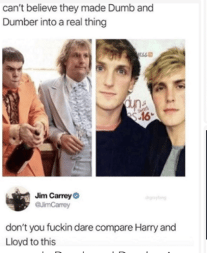 jim: can't believe they made Dumb and  Dumber into a real thing  ESS  Jim CarreyO  @JimCarrey  drgraytang  don't you fuckin dare compare Harry and  Lloyd to this