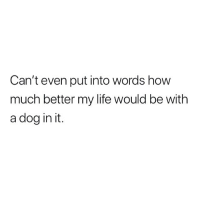 Life, Memes, and 🤖: Can't even put into words how  much better my life would be with  a dog in it. Seriously.