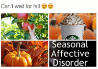 pumpkin spice, michael kors, can you say more?!: Can't wait for fall  Seasonal  Affective  Disorder pumpkin spice, michael kors, can you say more?!