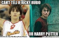 Harry Potter, Memes, and Nba: CANTTELLIF RICKY RUBIO  OMAS  OR HARRY POTTER  HarryPotterMesmes  book.com/TheHa  Face Credit: Harry Potter Memes