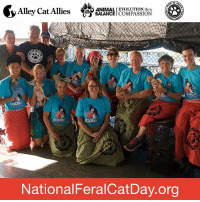 Our partners at Animal Balance are hosting Trapped in Paradise in partnership with Alofa Mo Meaola Love for Animals. This event is a massive, MASH-style spay/neuter clinic, and the first ever Trap-Neuter-Return (TNR) project in American Samoa!    Learn more about this and other National Feral Cat Day actions at www.nationalferalcatday.org. #FeralCatDay: CAO ANIMALI EVOLUTION thru  Alley Cat Allies  BALANCE  COMPASSION  National FeralCatDay.org Our partners at Animal Balance are hosting Trapped in Paradise in partnership with Alofa Mo Meaola Love for Animals. This event is a massive, MASH-style spay/neuter clinic, and the first ever Trap-Neuter-Return (TNR) project in American Samoa!    Learn more about this and other National Feral Cat Day actions at www.nationalferalcatday.org. #FeralCatDay