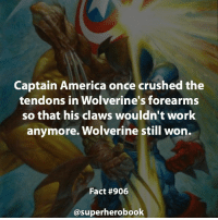 America, Anime, and Facts: Captain America once crushed the  tendons in Wolverine's forearms  so that his claws wouldn't work  anymore. Wolverine still won.  Fact #906  asuperherobook Describe Wolverine in one word. - marvel superhero facts marvelfacts supervillain rocketracoon spiderman marveluniverse anime marvelstudios xmen jeremyrenner avengers comics mcu marvelart marvelcomics teamcap civilwar teamironman ironman avengers guardiansofthegalaxy chrispratt captainamerica blackpanther stanlee logan wolverine xmen ===================================
