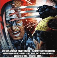 America, Memes, and Wolverine: CAPTAIN AMERICA ONCE CRUSHED THE TENDONS IN WOLVERINES  WRIST MAKING IT SO HIS CLAWS WOULDNT WORK ANYMORE.  WOLVERINE STILL WON THE BATTLE