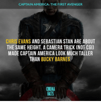 Chris Evans, Memes, and Stan: CAPTAIN AMERICA: THE FIRST AVENGER  CHRIS EVANS AND SEBASTIAN STAN ARE ABOUT  THE SAME HEIGHT A CAMERA TRICK CNOT CGI)  MADE CAPTAIN AMERICA LOOK MUCH TALLER  THAN BUCKY BARNES  CINEMA  FACTS So, Captain America will die in The Avengers: Infinity War movie and Bucky will take the place of Steve? What you think? Follow @cinfacts and share for friends captainamerica civilwar wintersoldier captainamericathewintersoldier steverogers buckybarnes thewintersoldier marvelmovies marvelcomics marvelheroes hero shield move action comics cinematic cinema_facts captainamericafirstavenger marvelheroes marveluniverse factsonly comicon