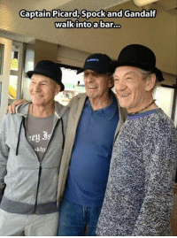 Gandalf, Memes, and Spock: Captain Picard,Spock and Gandalf  walkintoa bar...  Py  kly