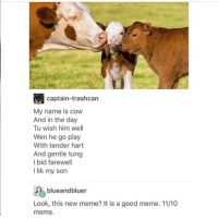 Memes, 🤖, and Looking: captain-trashcan  My name is cow  And in the day  Tu wish him well  Wen he go play  With tender hart  And gentle tung  I bid farewell  I lik my son  blue andbluer  Look, this new meme? It is a good meme. 11/10  meme. B L E S S - Max textpost textposts