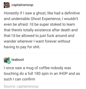 Ghosts: captainsnoop  Honestly if I saw a ghost, like had a definitive  and undeniable Ghost Experience, I wouldn't  even be afraid. I'd be super stoked to learn  that there's totally existence after death and  that I'd be allowed to just fuck around and  wander wherever I want forever without  having to pay for shit  teaboot  I once saw a mug of coffee nobody was  touching do a full 180 spin in an IHOP and as  such I can confirm  Source: captainsnoop Ghosts