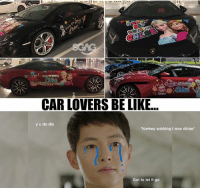 Be Like, Memes, and Let It Go: CAR LOVERS BE LIKE  y u do dis  lowkey wishing I was chloe*  Got to let it go I car-nnot believe my eyes