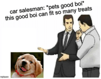 Pets, Good, and Boi: car salesman: *pets good boi  this good boi can fit so many treats  imgfip com <p>so many</p>