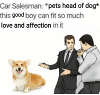 Head, Love, and Pets: Car Salesman: *pets head of dog*  this good boy can fit so much  love and affection in it